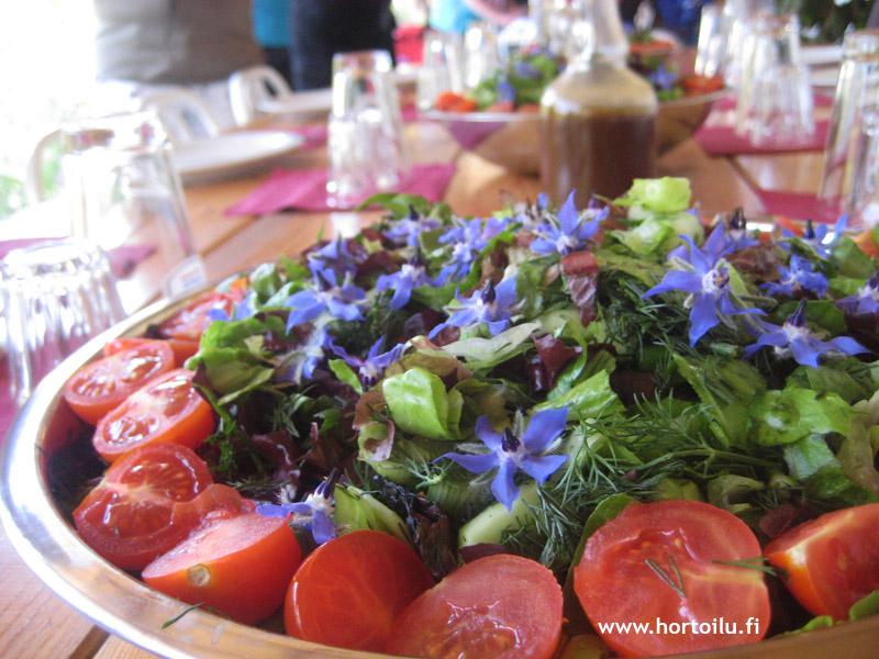 salaatti spili 2014