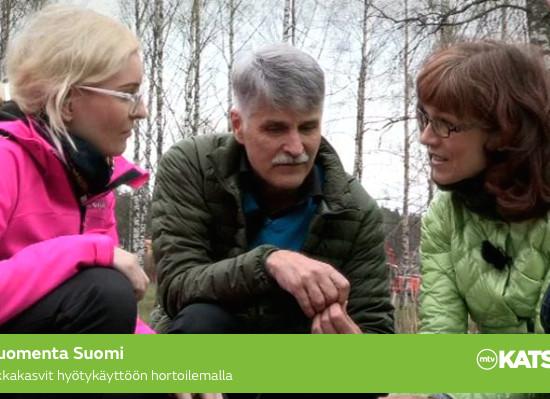 Kivimetsät MTV3:n Huomenta Suomessa