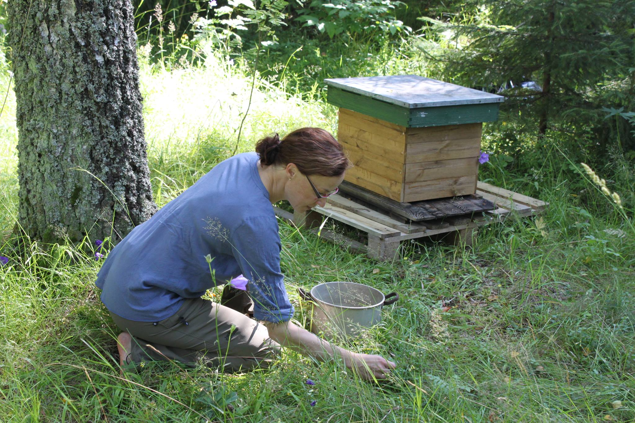 tanja-oreto-mehilaisia