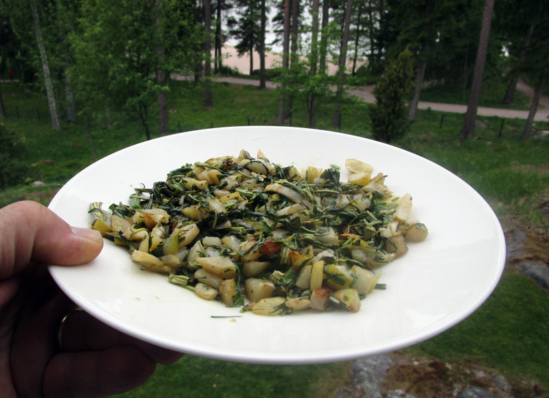 hortalisuke lautasella